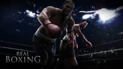 Recenzja Real Boxing